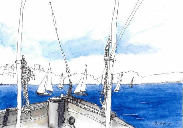Sydney harbour Waratah
