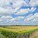 Fryslân - Homeland #22