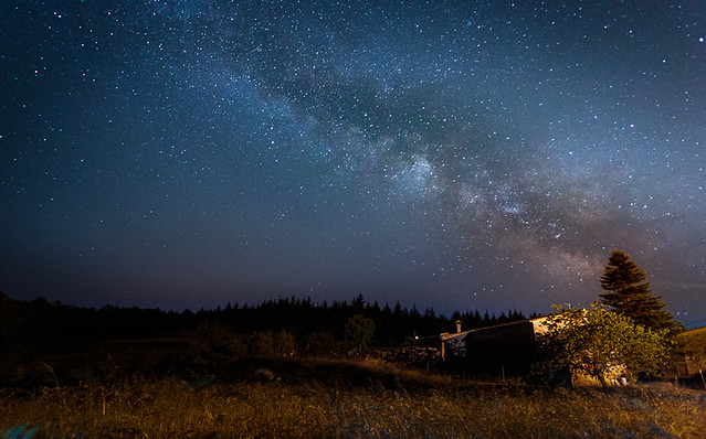 First Milky Way