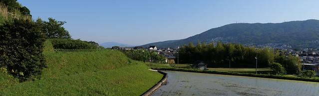Spring Walk, Crossing the pass, Ikoma @Nara,May2021