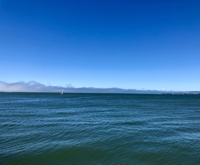 The fog on the edge of the bay this afternoon