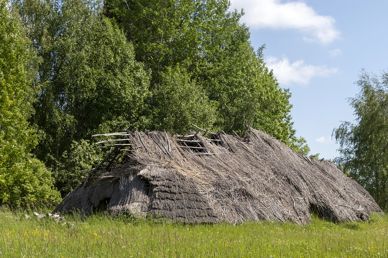 The Iron Age House