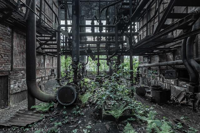 Rust Garden