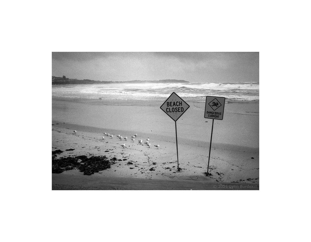 Heavy seas at Dee Why beach, Sydney coast, autumn 2021  #504