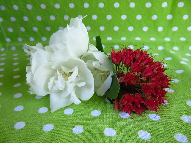 Blüten in Weiß & Rot