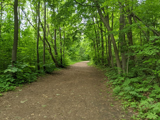 Grand Trunk Trail
