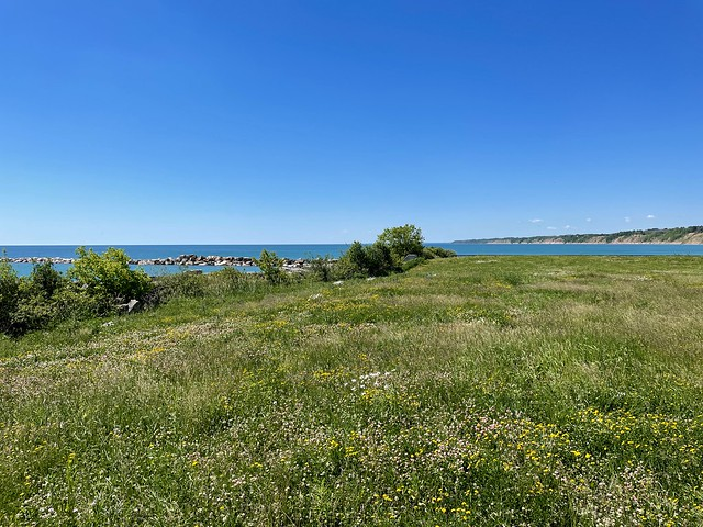 Wildflower Lakefront