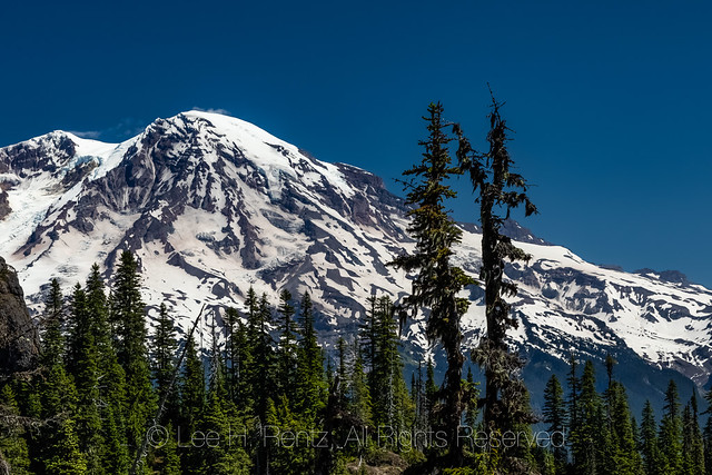 Mount Rainier Viewed from High Rock Lookout Trail