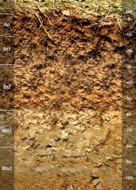 Otwood soil series KY