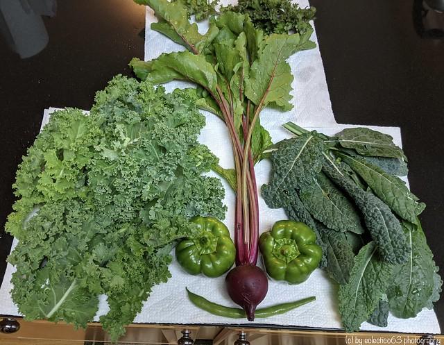(healthy) food makes people happy!