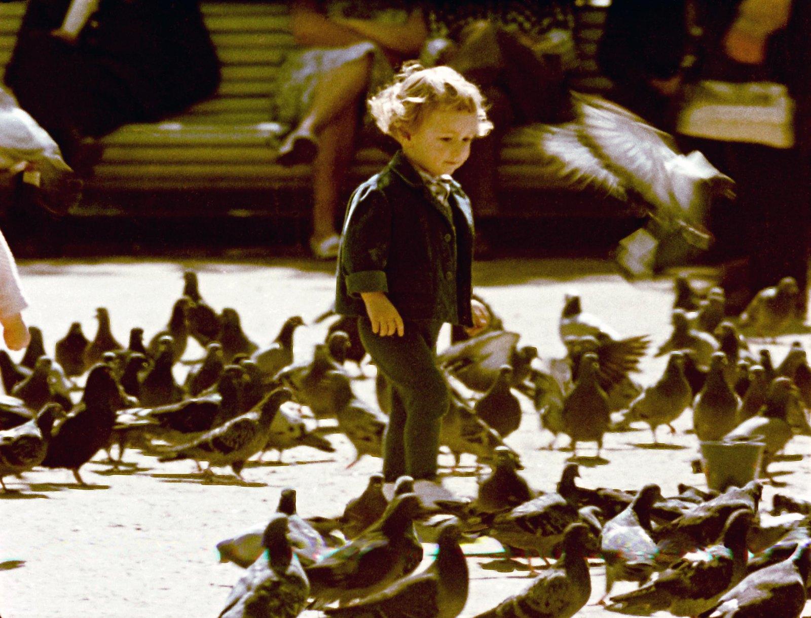 1961. Мальчик и голуби. Кадр из документального фильма «Город большой судьбы» (реж. И.П. Копалин, ЦСДФ, 1961)