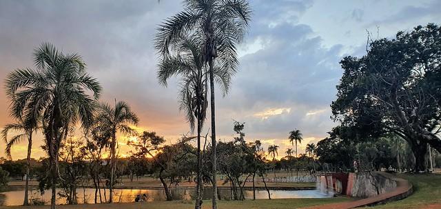 Paisagens do Parque - Brasília