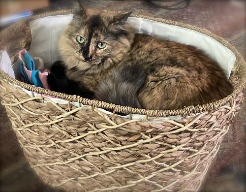 Laundry basket floof