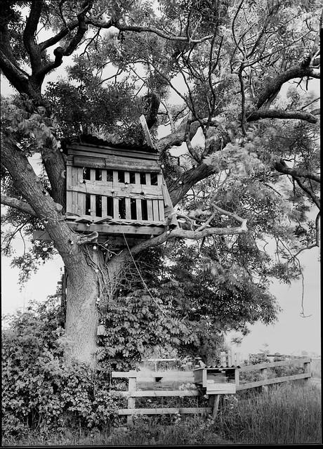 Treehouse take 2