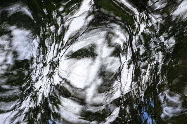 River reflection with a pareidolia face