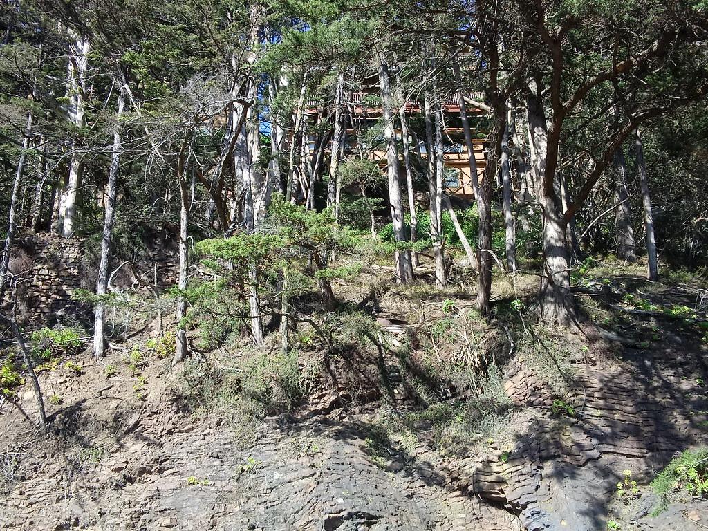 Edgehill Mountain