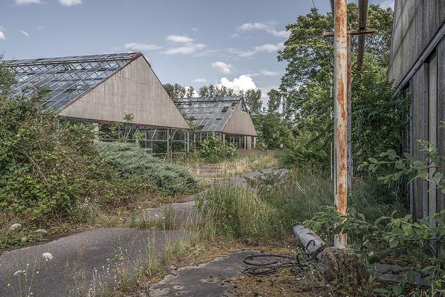 Greenhouses gone green