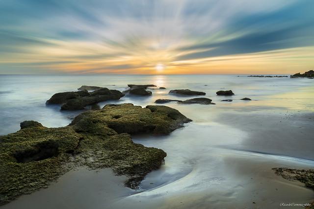 The shore - La orilla