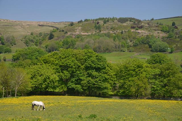 Tranquility, Marsden, Huddersfield, West  Yorkshire, England.