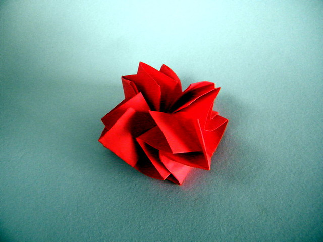 Carnation - Akemi Ikeda