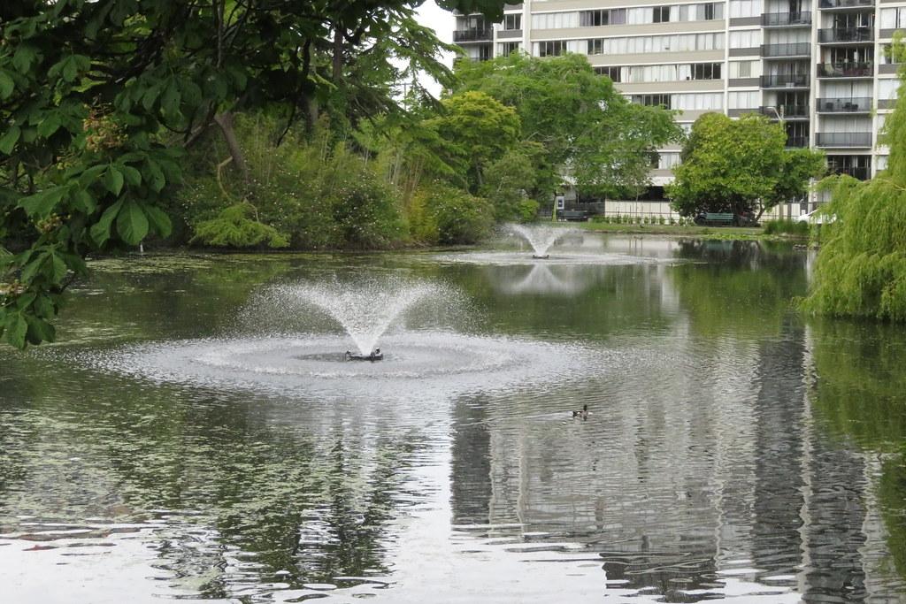 2021 05 31 Beacon Hill Park 23