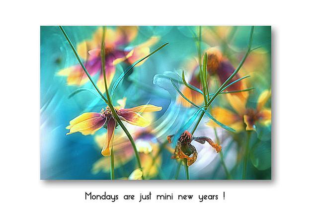 Mondays are just mini new years :-)
