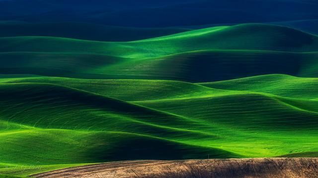 The Green Waltz