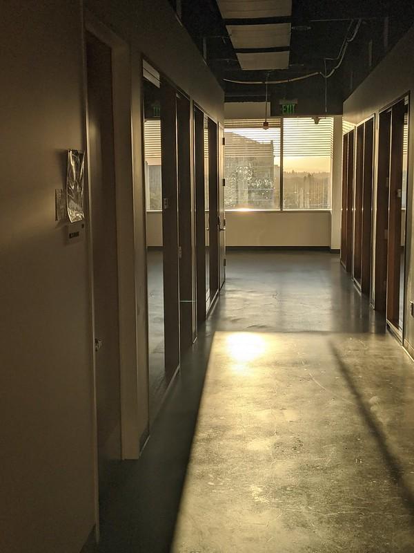 Sunlight in deserted office