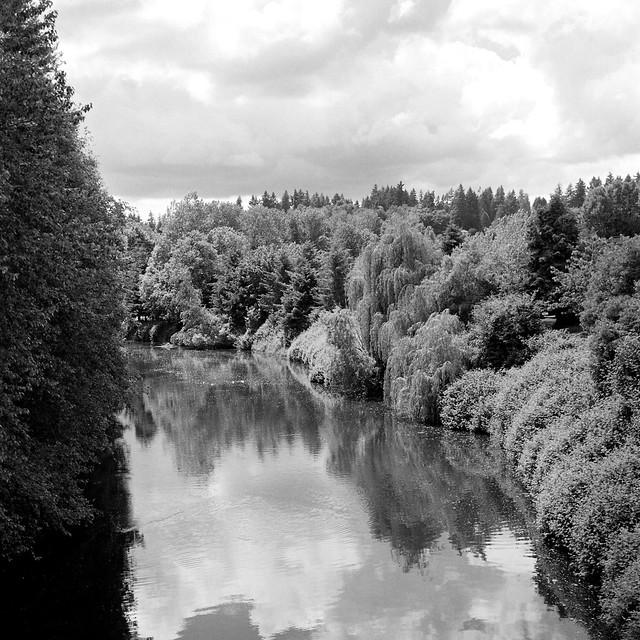Sammamish River in Bothell