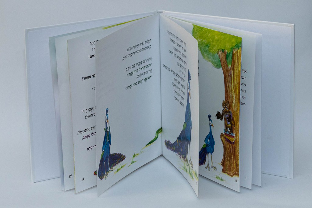 ספר ילדים השכנת סכסוכים  אורלי בינדר יוצרת  סופרת ישראלית אמנית עכשווית ציירת מודרנית orly binder