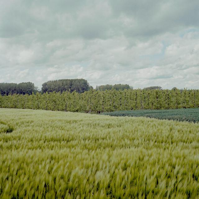 belgian farmers landscape