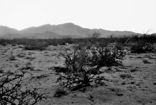 Bahía de los ÁngelesI, Baja California (Retina la Mayo 2021 MG_20210524_0007)