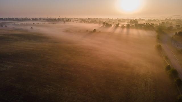 Foggy morn' farmland flyup