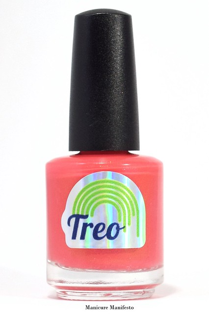 Treo Lacquer The Charity Box
