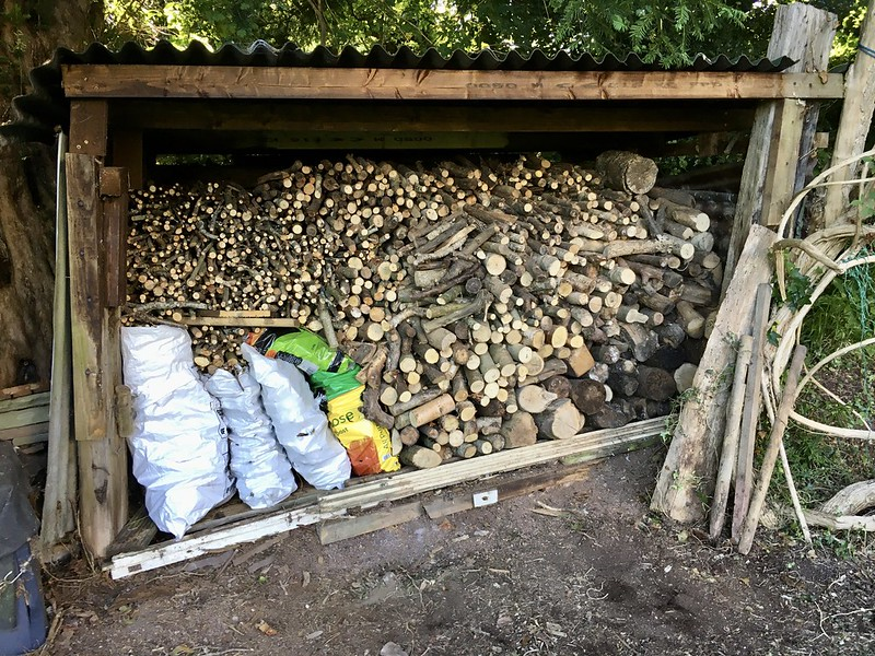 A photo of a large logshed full of logs, sort of sorted according to size