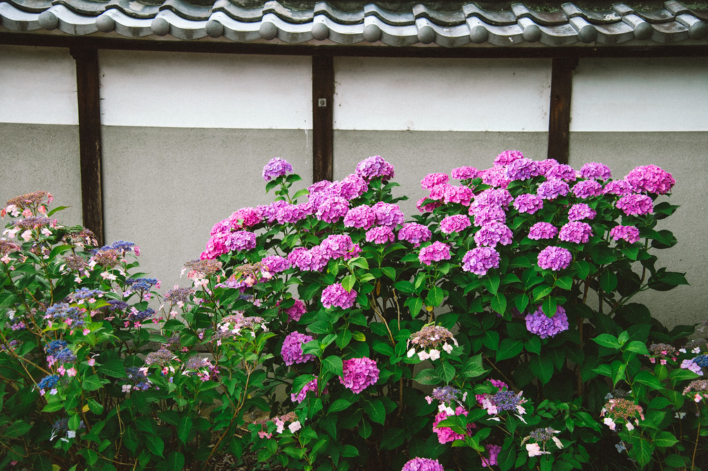 大塚性海寺歴史公園