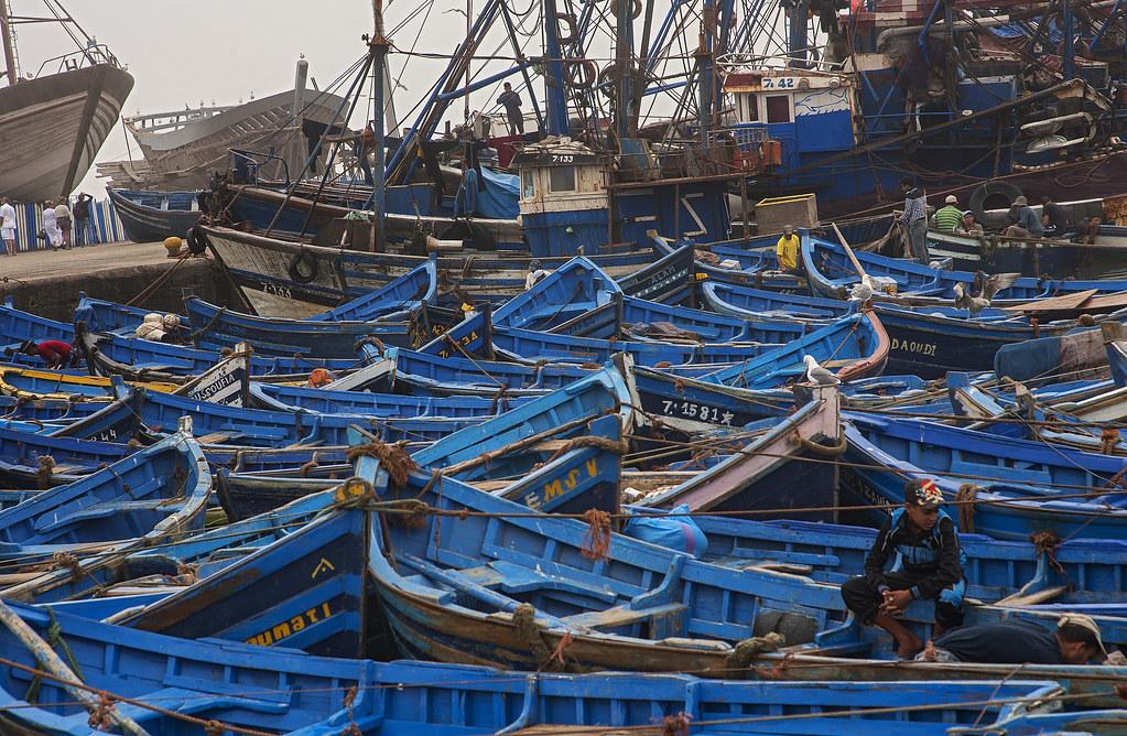 Fishers of Essaouira