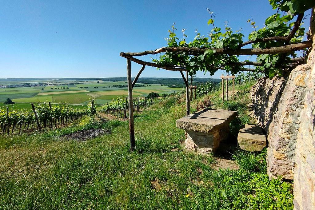 Ausblick vom Wingertshäuschen vom Weingut Wagner-Stempel - Hiwweltour Heideblick