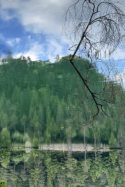 Verdrehte Welt - Spiegelung im Alatsee / Twisted world - reflection in the Alatsee