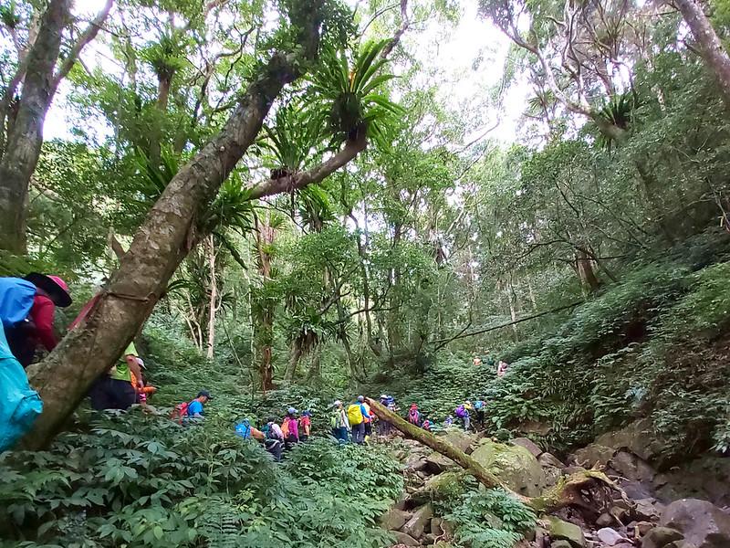 Jiajiuling trail in Wulai