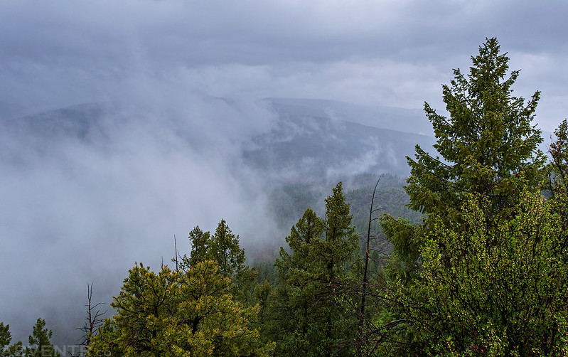Cloudy View
