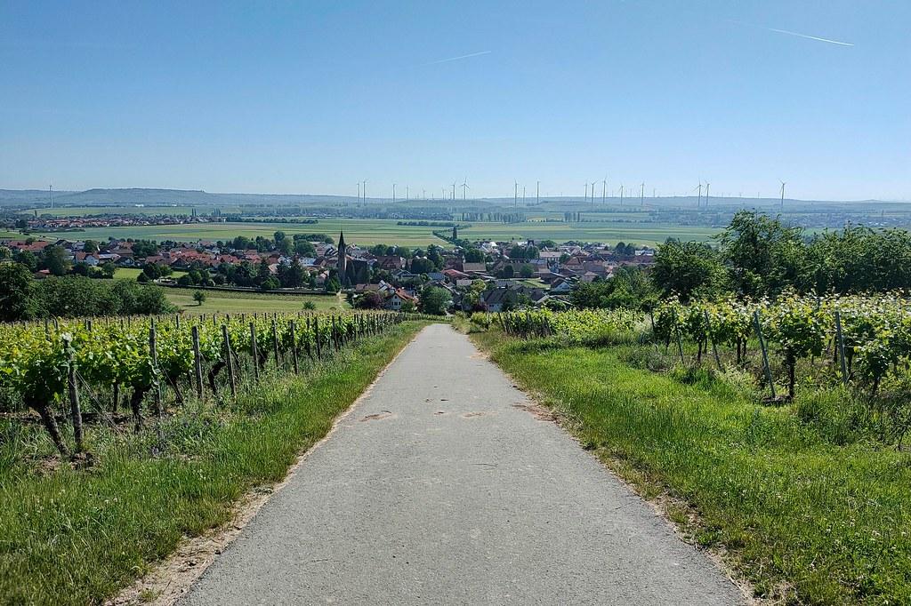 Siefersheim - Hiwweltour Heideblick