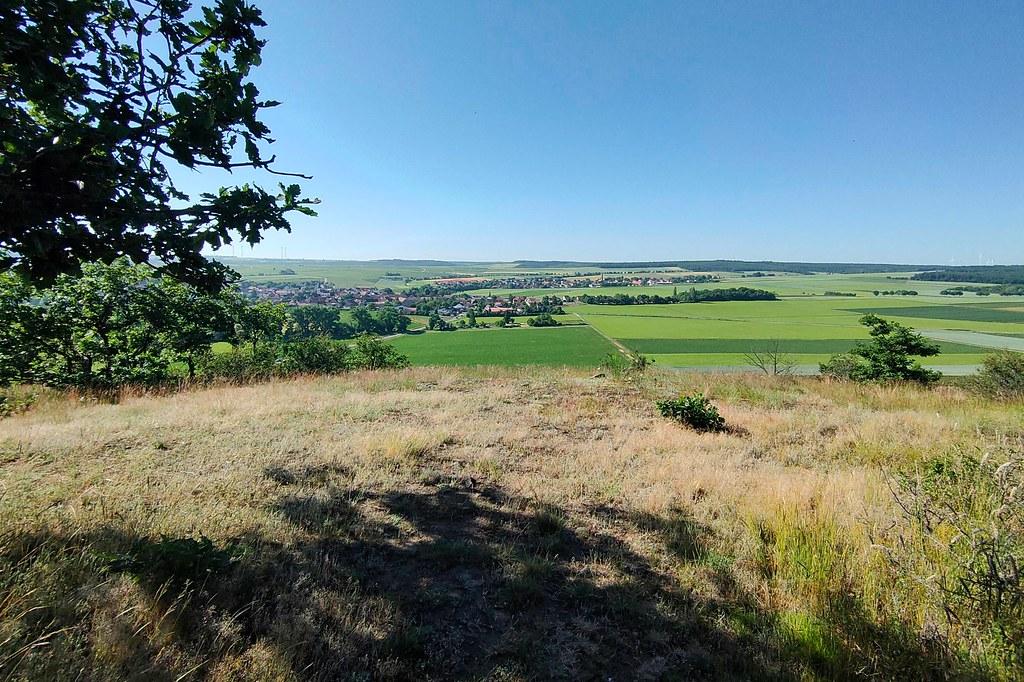 Blick auf Wonsheim und Stein-Bockenheim am Siefersheimer Höllberg - Hiwweltour Heideblick