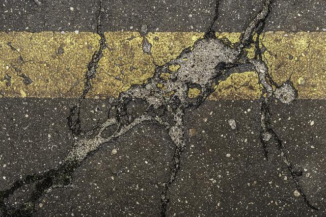 yellow line XV - Dali's cat