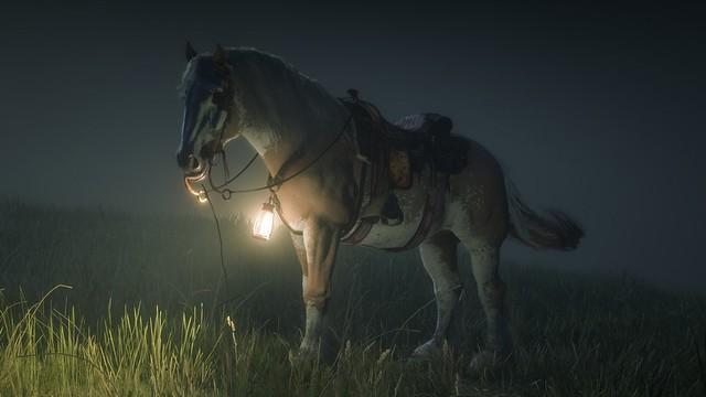 My Horse@RDO
