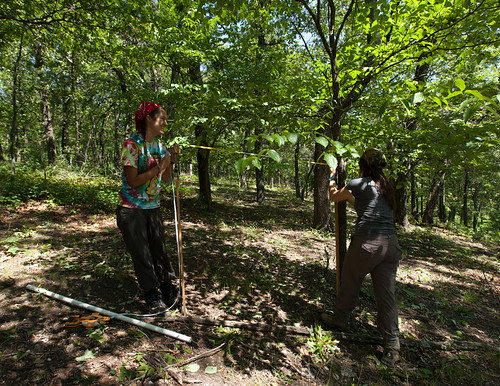 Tue, 06/05/2012 - 15:09 - Tree mapping, Tyson Forest Dynamics Plot, Summer 2012.  PC: Jonathan Myers