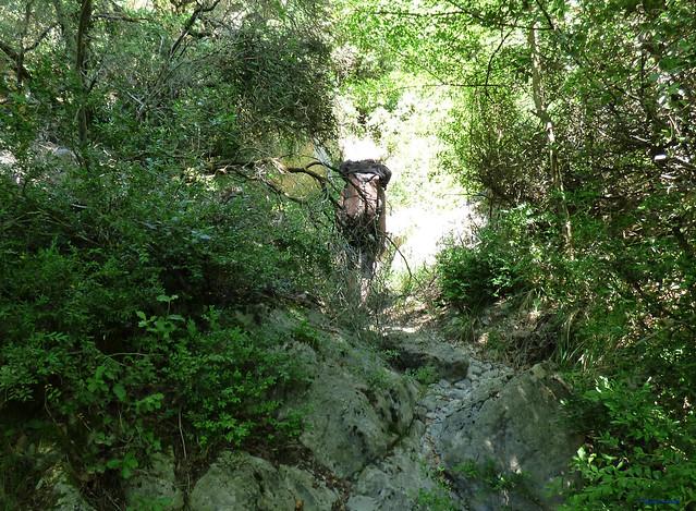 Congost de Tres Pont -03- Acceso sectores de escalada -03- Fontanella -02- Sendero de Acceso 04 Por el Barranc de Fontanella 01