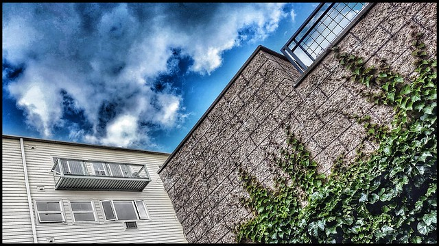 Walls, Windows, Clouds, Ivy and two Fences