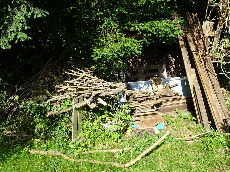 Restacking the log shed: Before