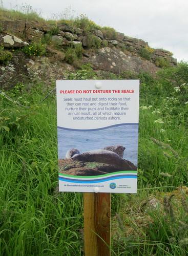 Do not disturb seals, Seafield, Kirkcaldy